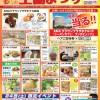 【新潟県生協まつり】「秋の生協まつり」二日間開催中!
