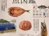 【雑誌掲載】おいしい魚図鑑