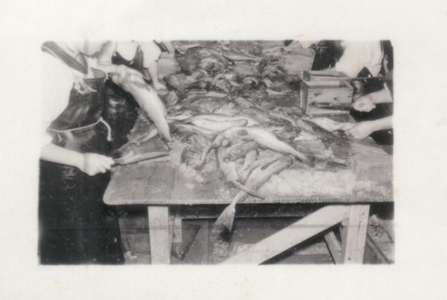 当時の原料魚を捌いている様子